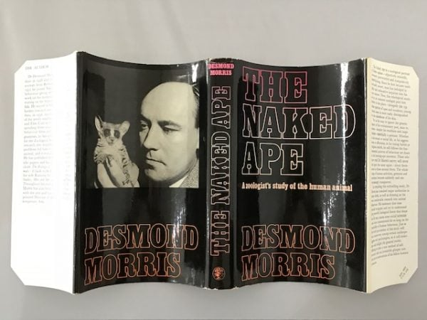 desmond morris the naked ape first edition3