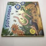 julia donaldson superworm double signed first edition4